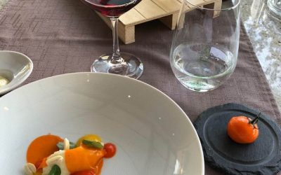 Lessons in Excellence from a Dinner in Mendrisio